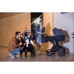 Детская коляска Invictus V-PRINT 2 в 1
