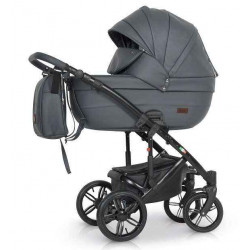 06 - Детская коляска RAY Eterno  Ecco 2 в 1