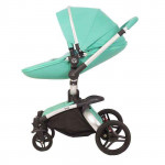 Детская коляска Rant Nest 2 в 1